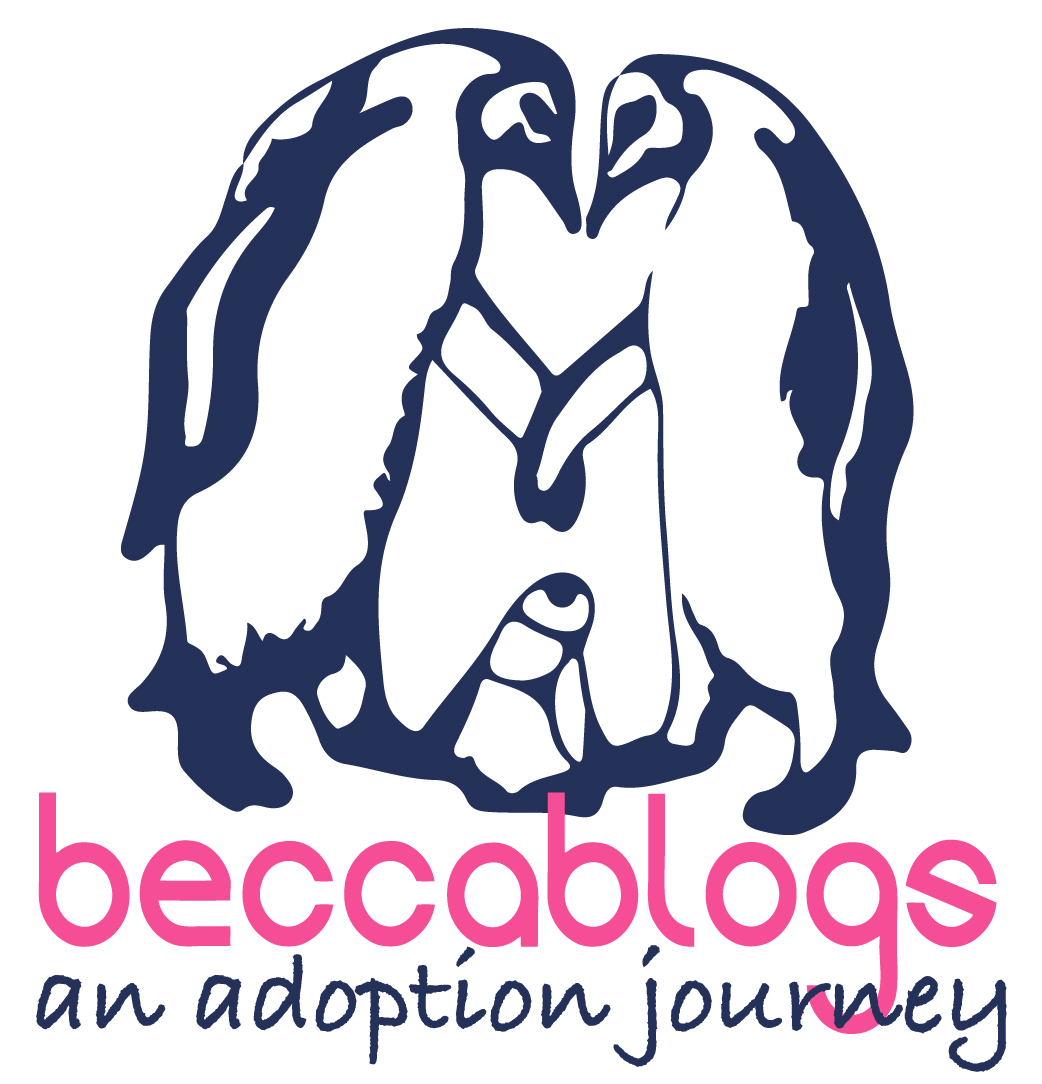 Becca Blogs